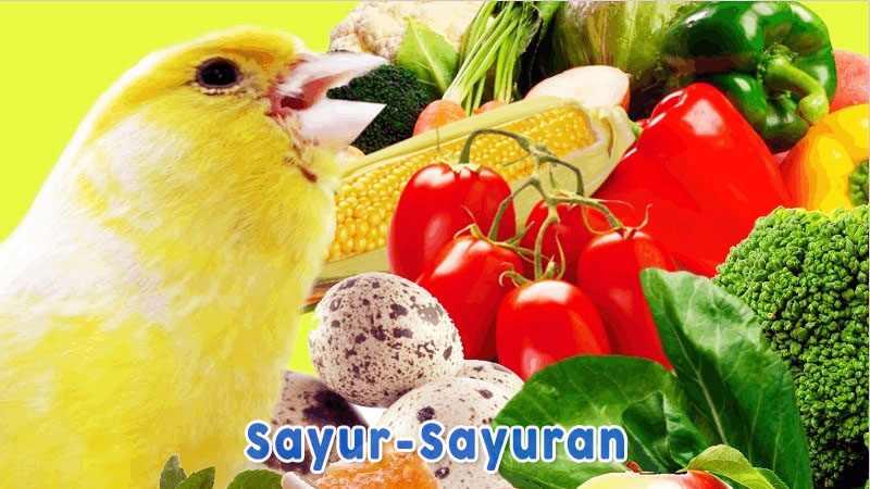 Sayur Sayuran Nama Makanan Burung